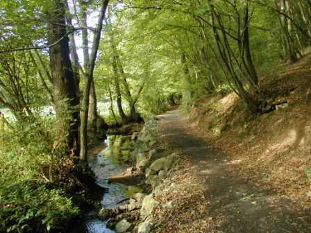 Nature Walk outside Lyon October 14th